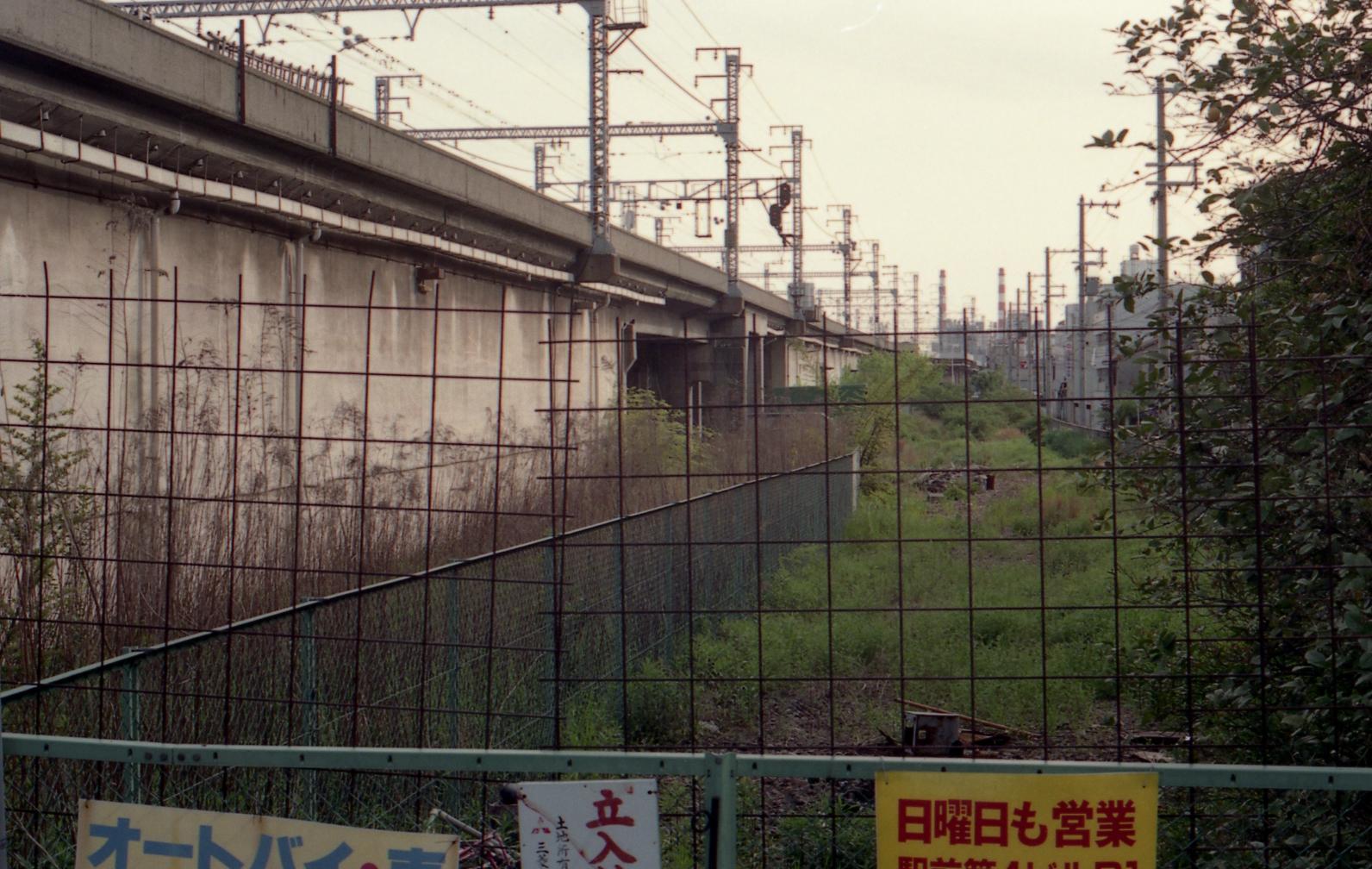 199204269